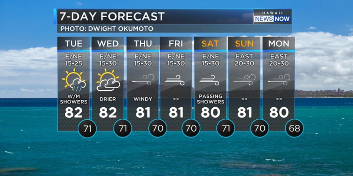 Forecast: Gusty trade winds to persist through the weekend