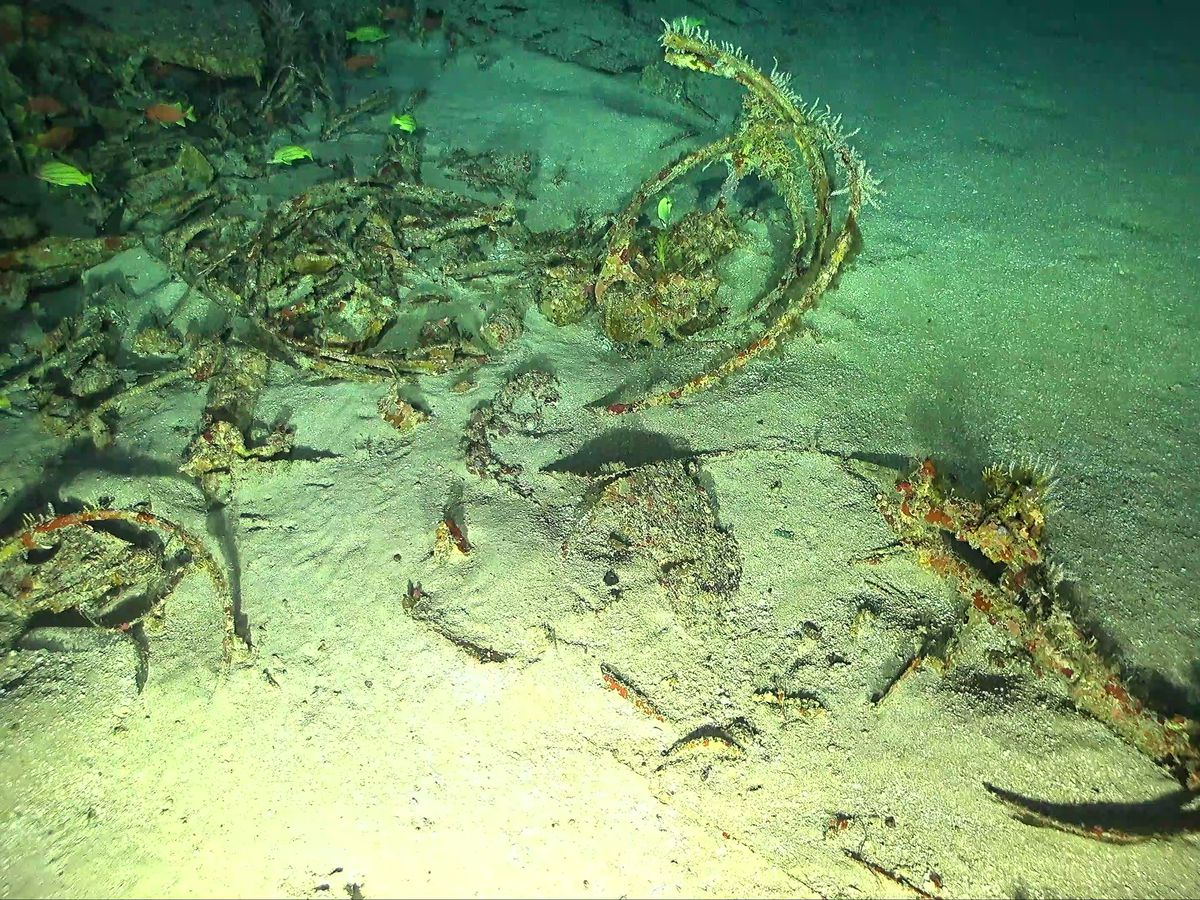 Rediscovery of WWII bomber off Oahu raises hopes for recovery of remains