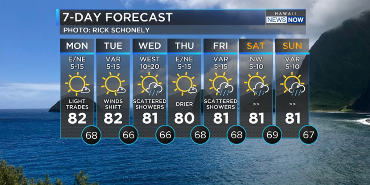 Forecast: Light winds and more big surf on the way