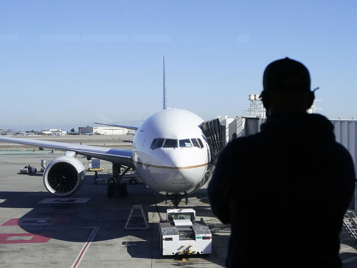 As vaccinations ramp up, pandemic-hit travel agencies could become vital