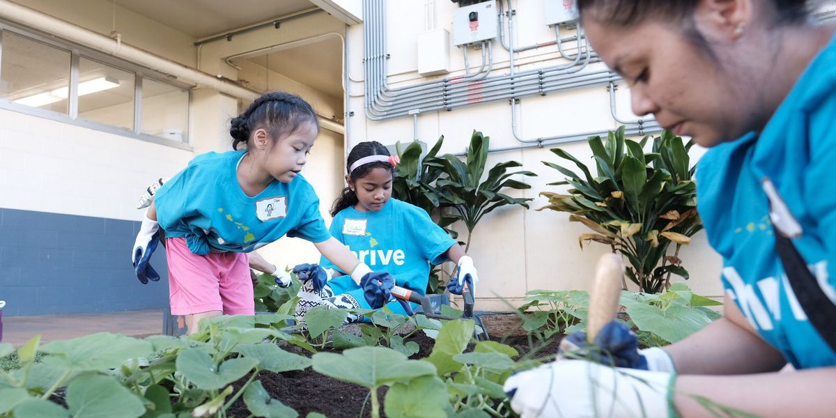 During the 'season of giving back,' volunteers tidy up a Honolulu school