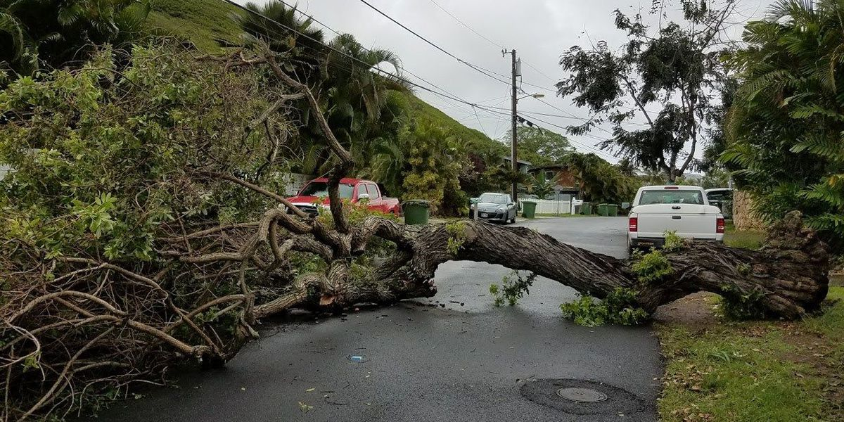 Honolulu Fire responded to 42 weather emergencies during Friday thunderstorms