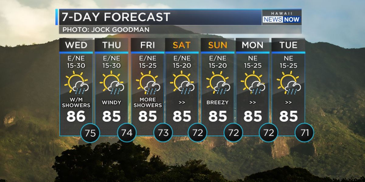 Forecast: Gusty trade winds to hold through Thursday