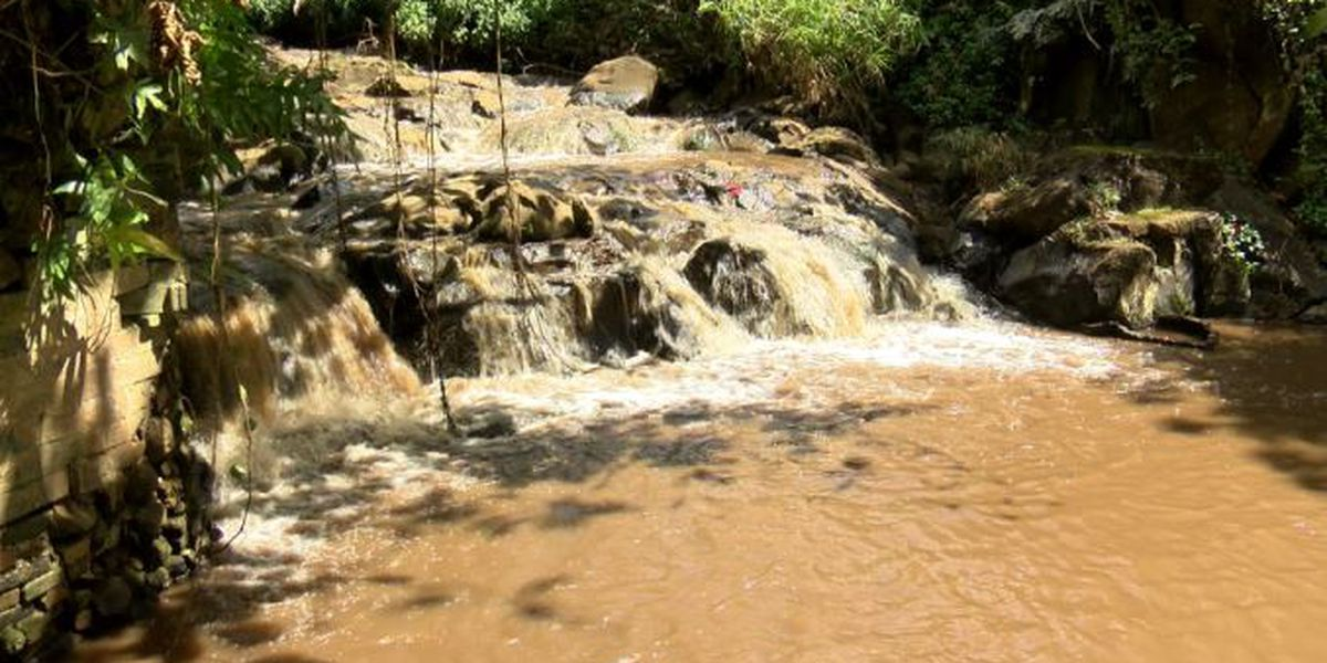 Nuuanu Stream runs chocolate brown after Board of Water Supply reservoir work