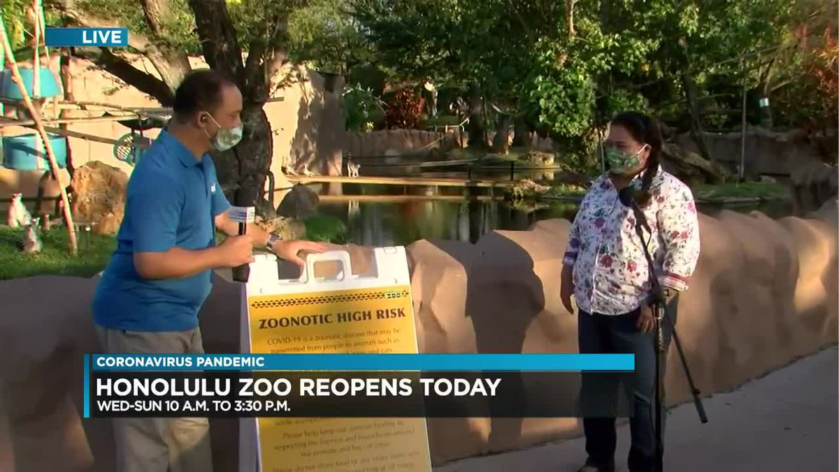 Honolulu Zoo reopens with new safety guidelines, restrictions