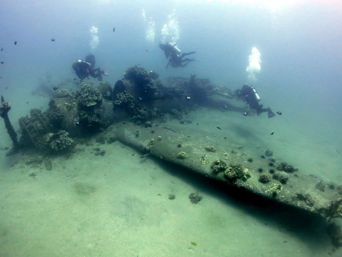 This researcher is on a mission to preserve military artifacts sitting on the ocean floor