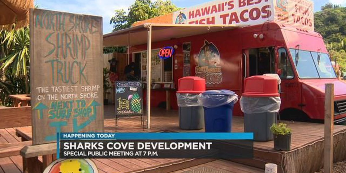Public meeting held to discuss future of Shark's Cove
