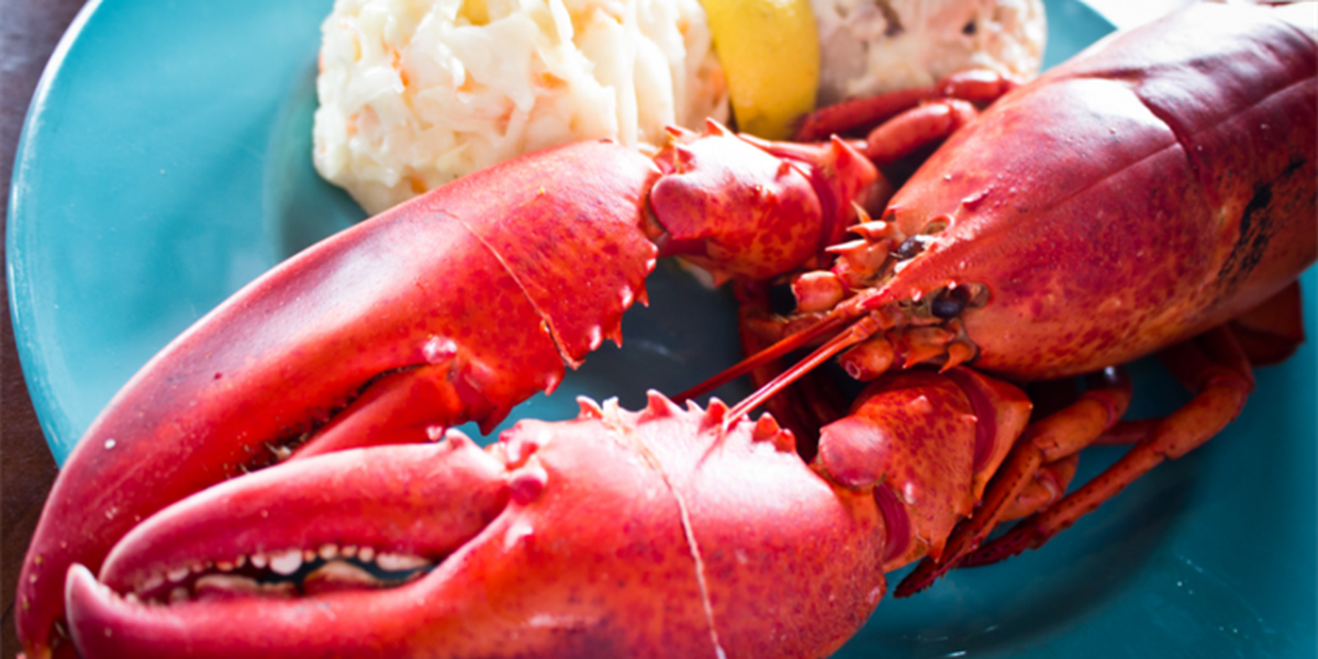 Shellfish scheme: Oahu man causes 50K lbs of lobster to be sent to China
