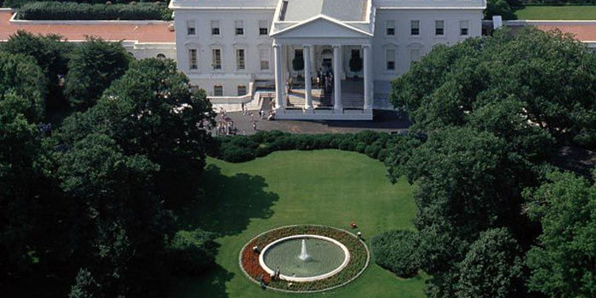 Man arrested for attempting to fly drone over White House fence