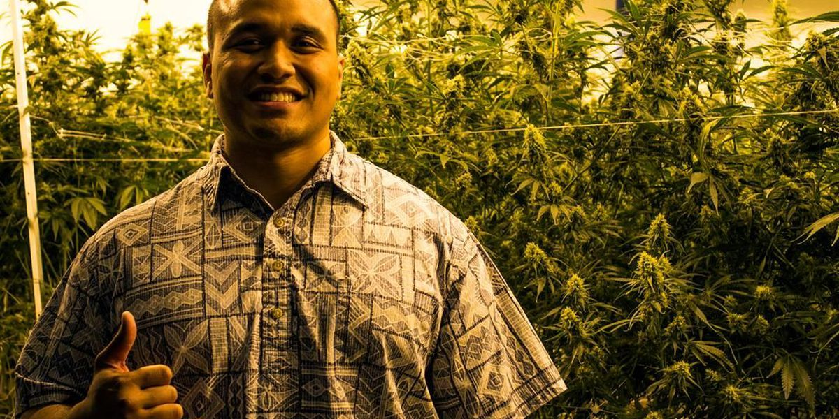 In Las Vegas, a Waimanalo native is seeing green by cashing in on cannabis industry