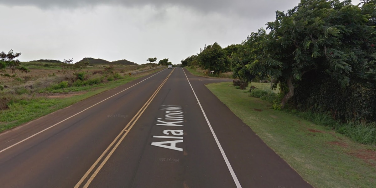 Suspect arrested in fatal hit-and-run crash on Kauai