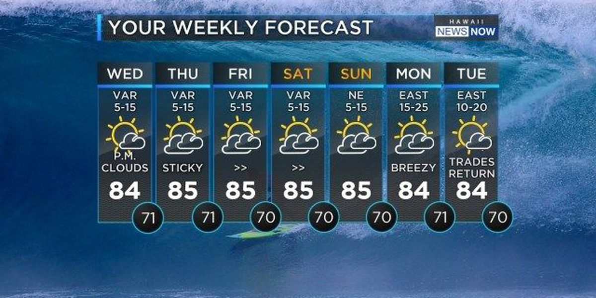 Forecast: Clear skies, light winds for the week