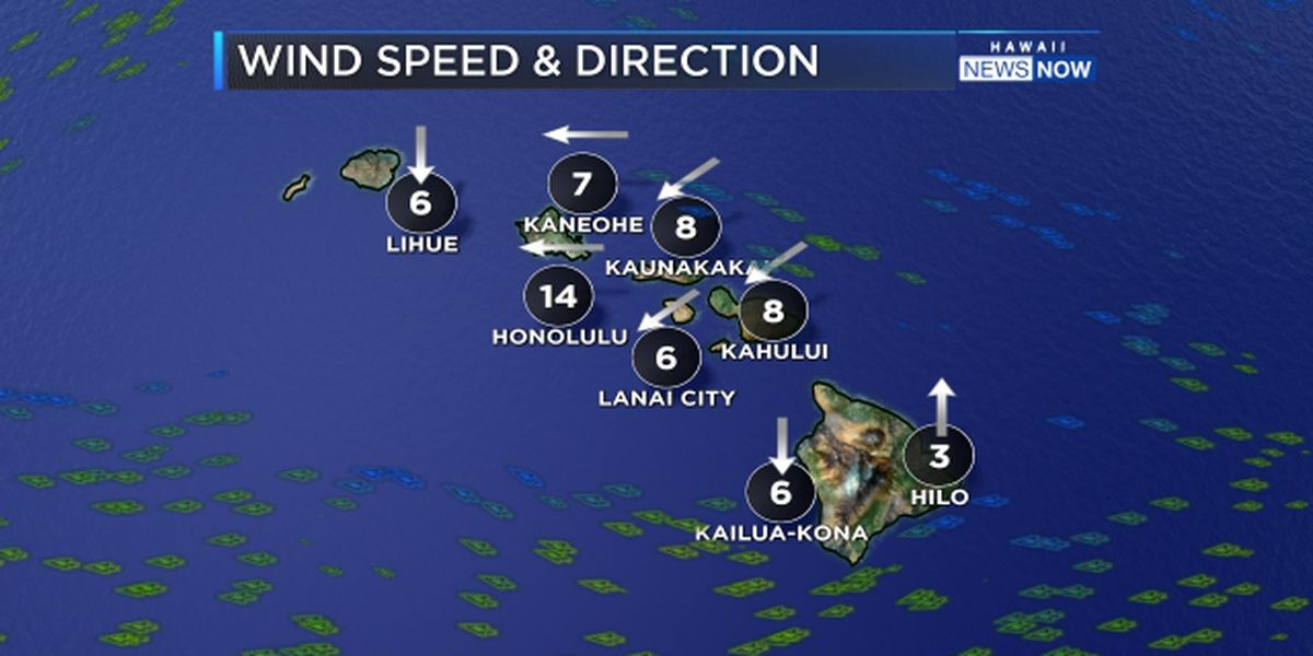 Forecast: Trade winds returning for Thanksgiving Day