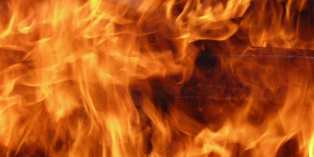 Man dies in auto fire on Hawaii Island