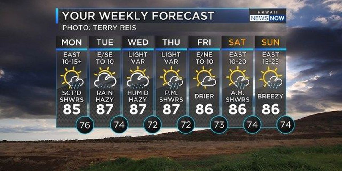 Forecast: More rain, chance of heavy showers