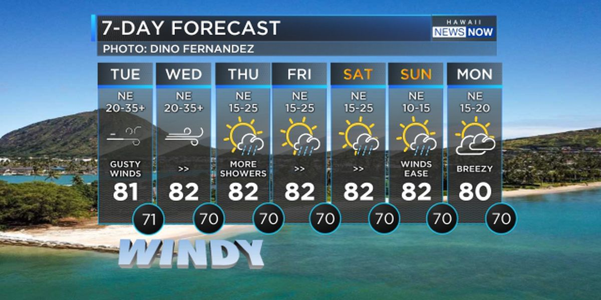 Forecast: Gusty trade winds to persist through Thursday