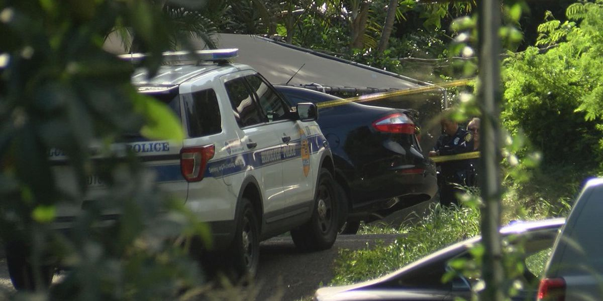 Police arrest man on kidnapping, assault charges after stabbing in Nuuanu