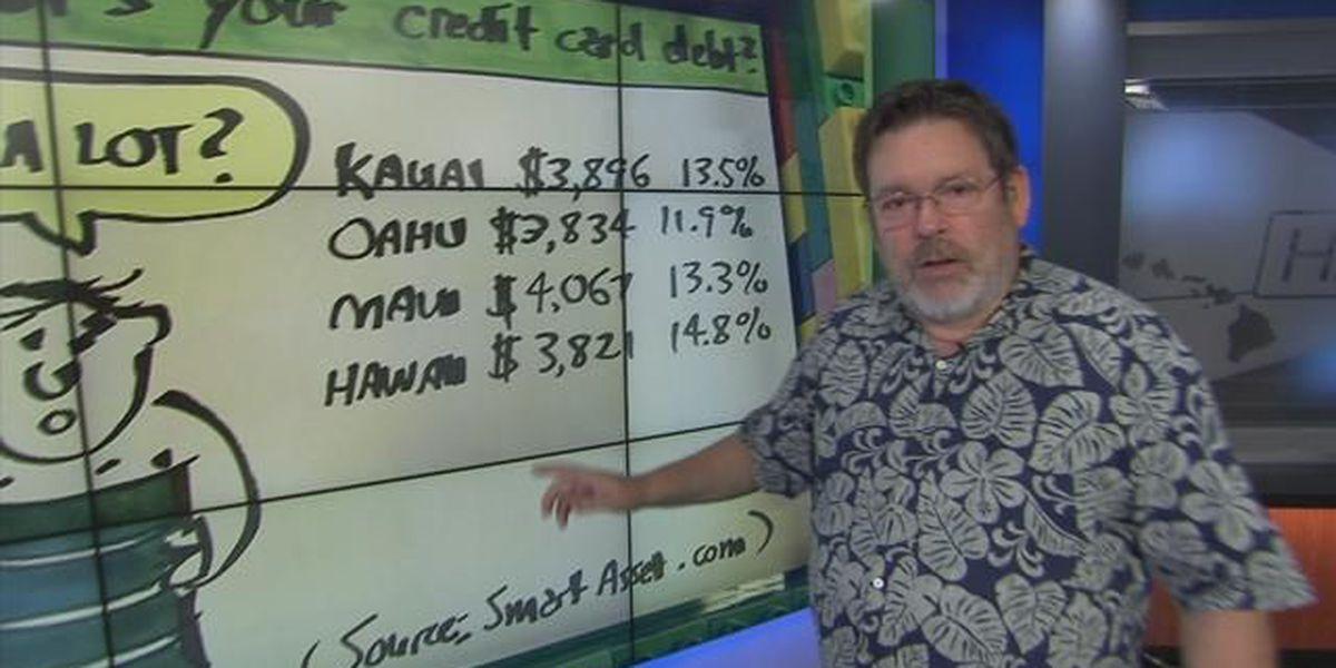 Business Report: Credit card debt across Hawaii