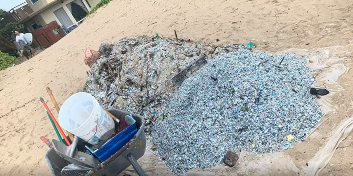 'It's really eye opening': Kailua Beach blanketed with microplastics