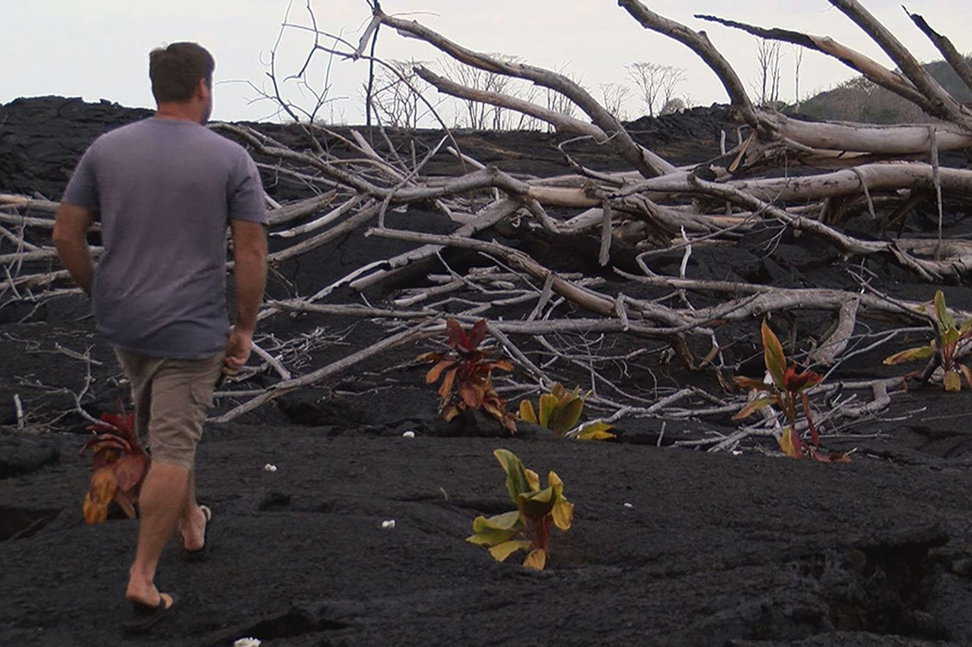 Lava took this military veteran's home  Rather than retreat