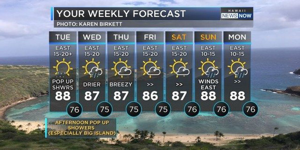 Forecast: More rain, thunderstorms possible for Tuesday