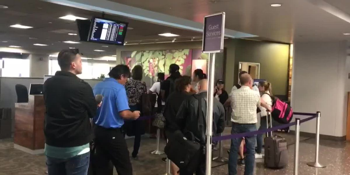 Travelers report missing flights thanks to long security lines at Honolulu airport