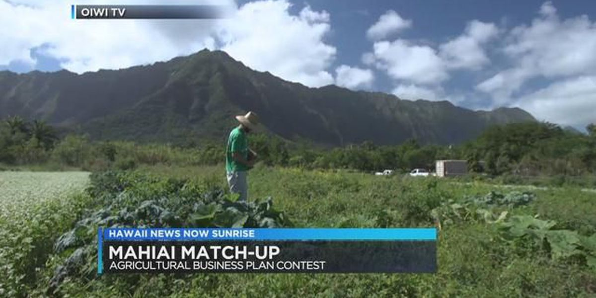 Agricultural business plan contest to support Hawaii's sustainable food movement