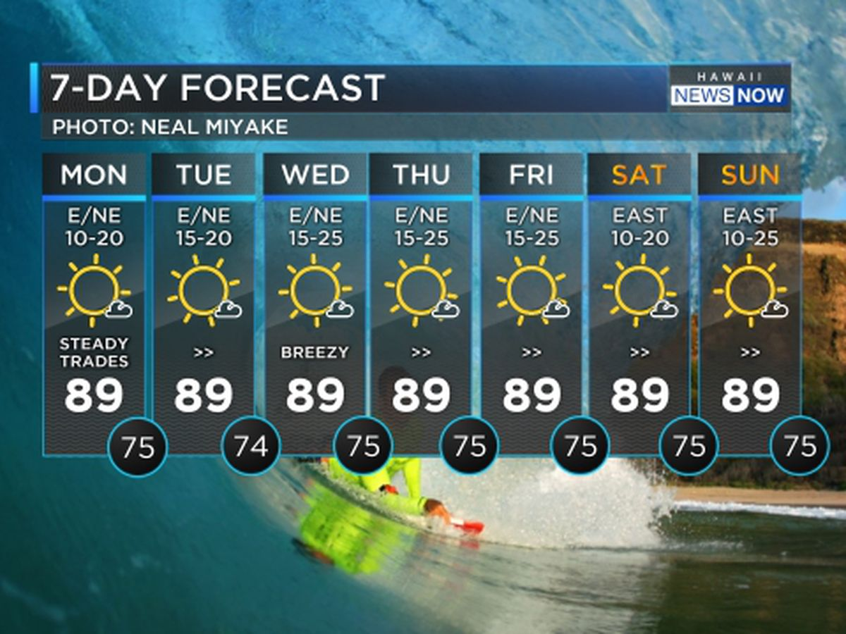 Forecast: Stronger trade winds on the way