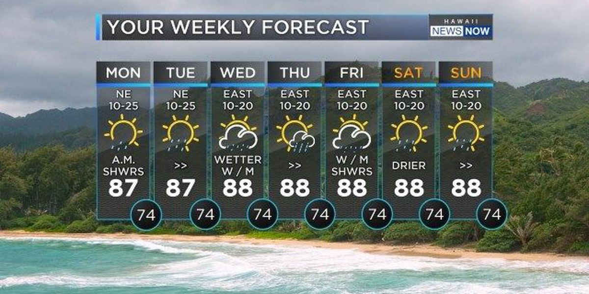 Forecast: Trade wind weather for Monday; wetter later in the work week