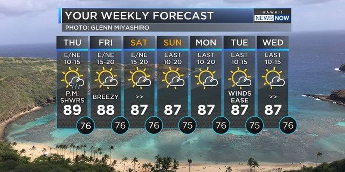 Forecast: Light winds and some morning showers, then sunshine!