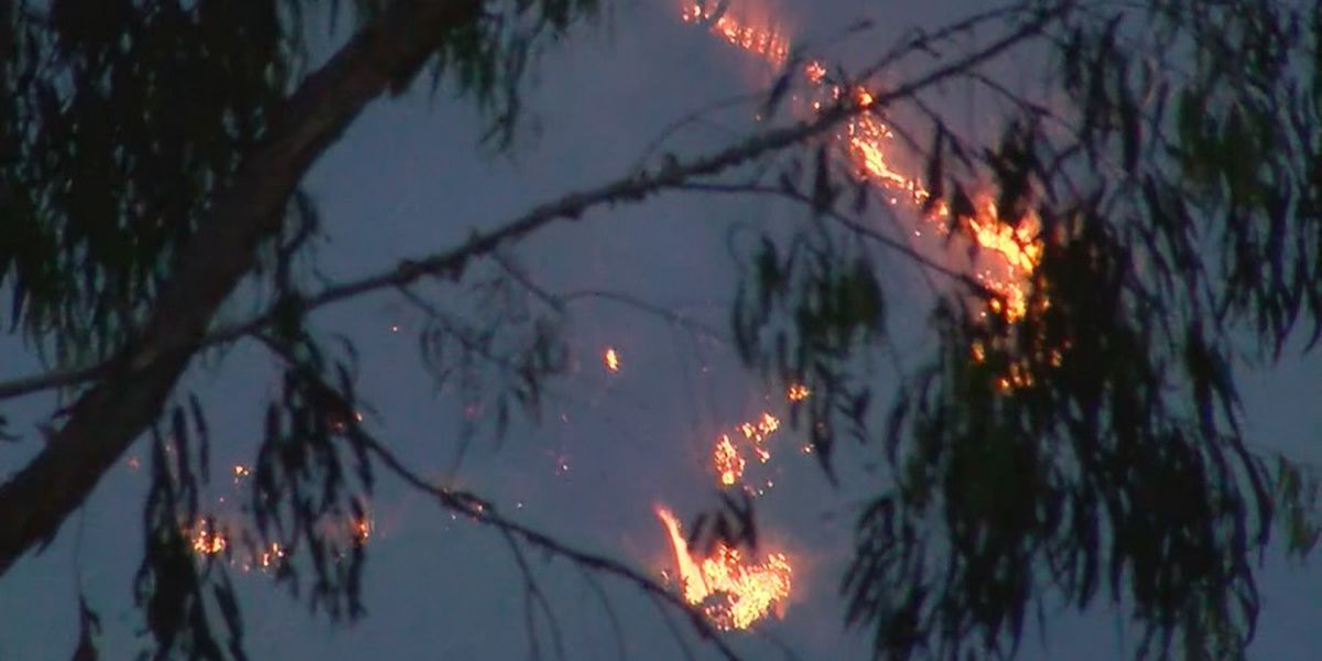 Firefighters kept busy with 2 separate brush fires on Oahu