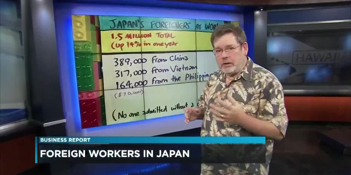 Business Report: Who works in Japan?