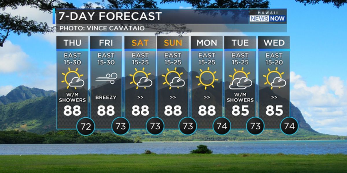 Forecast: Breezy trade winds to hold through the weekend