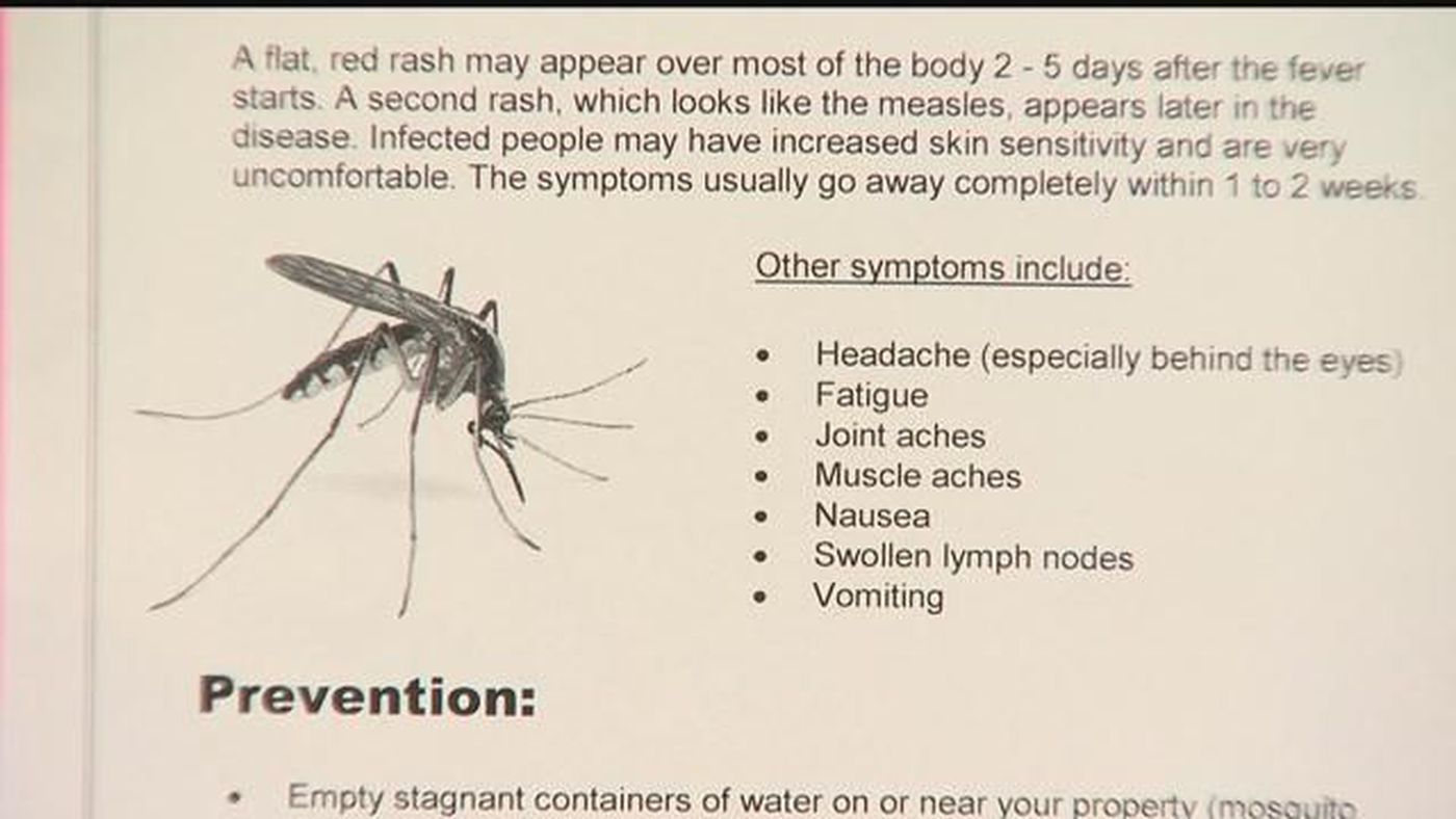 DOH confirms 2 cases of locally-acquired dengue fever