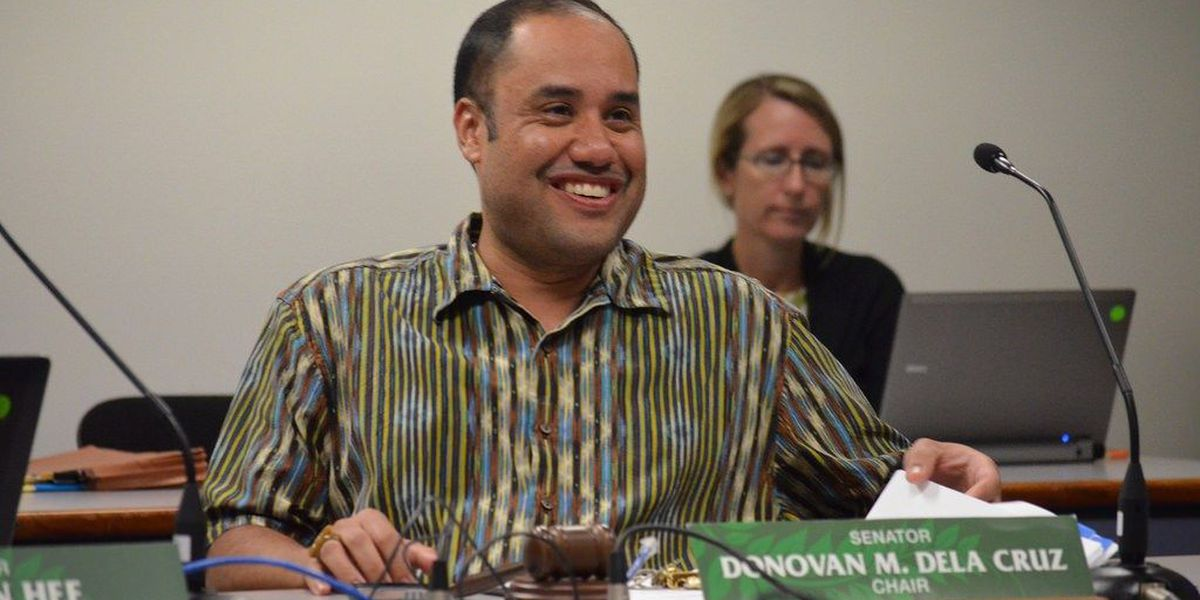 Dela Cruz named new chair of powerful Senate committee