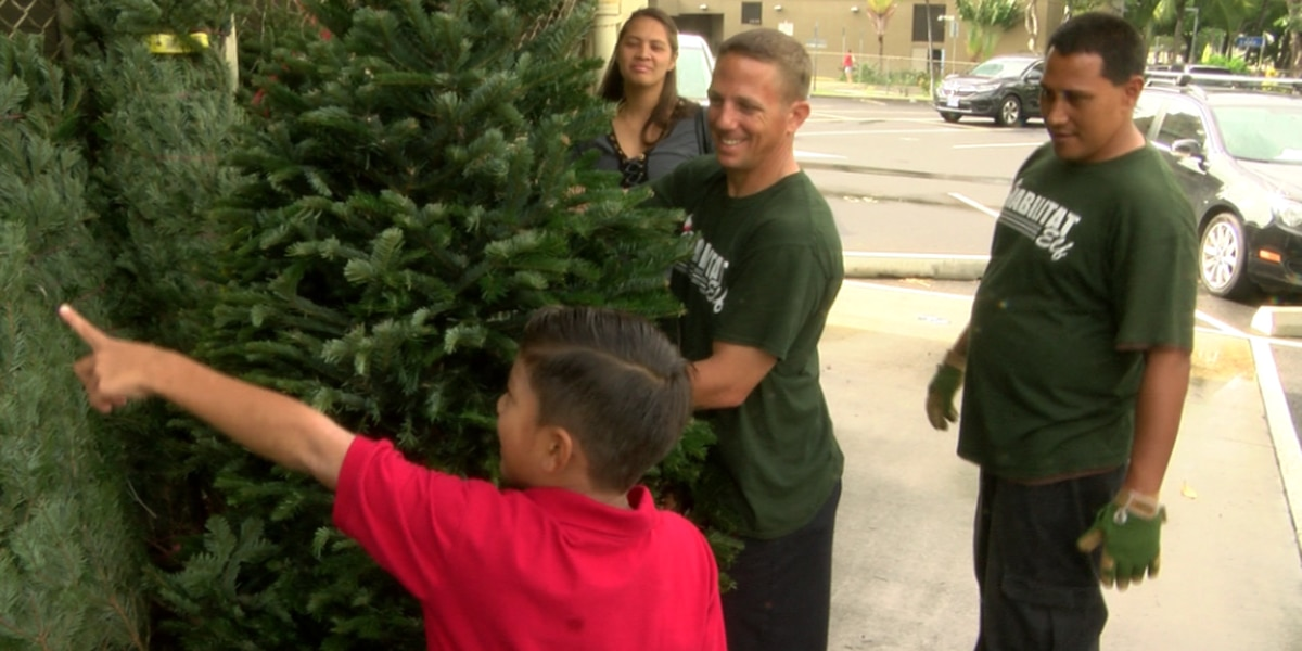 Local businessman donates 75 Christmas trees for families in need