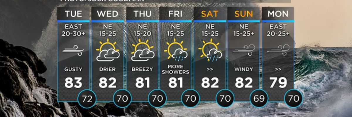 Forecast: Gusty winds persist, pick up again for the weekend