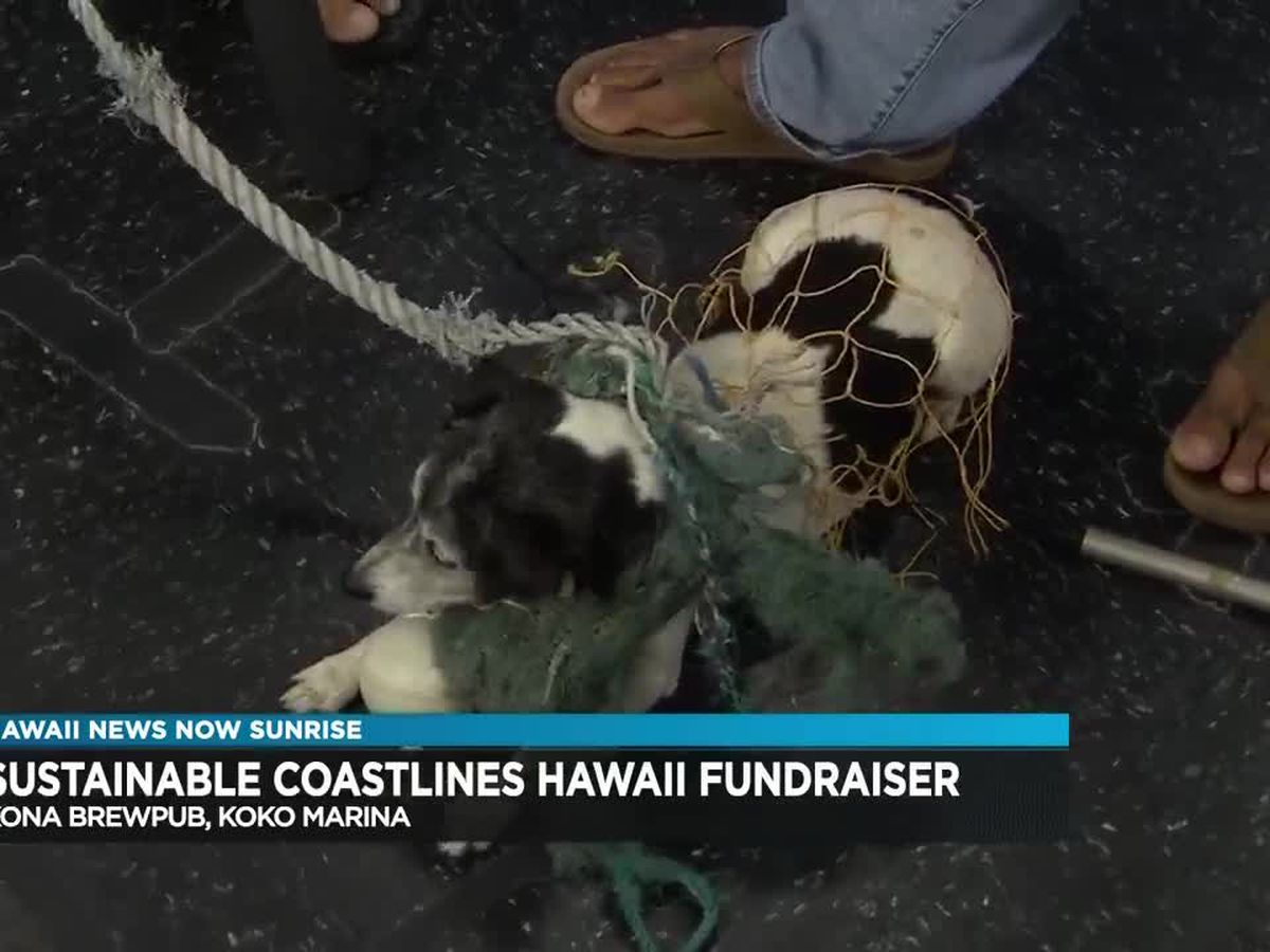 Sustainable Coastlines Hawaii fundraiser