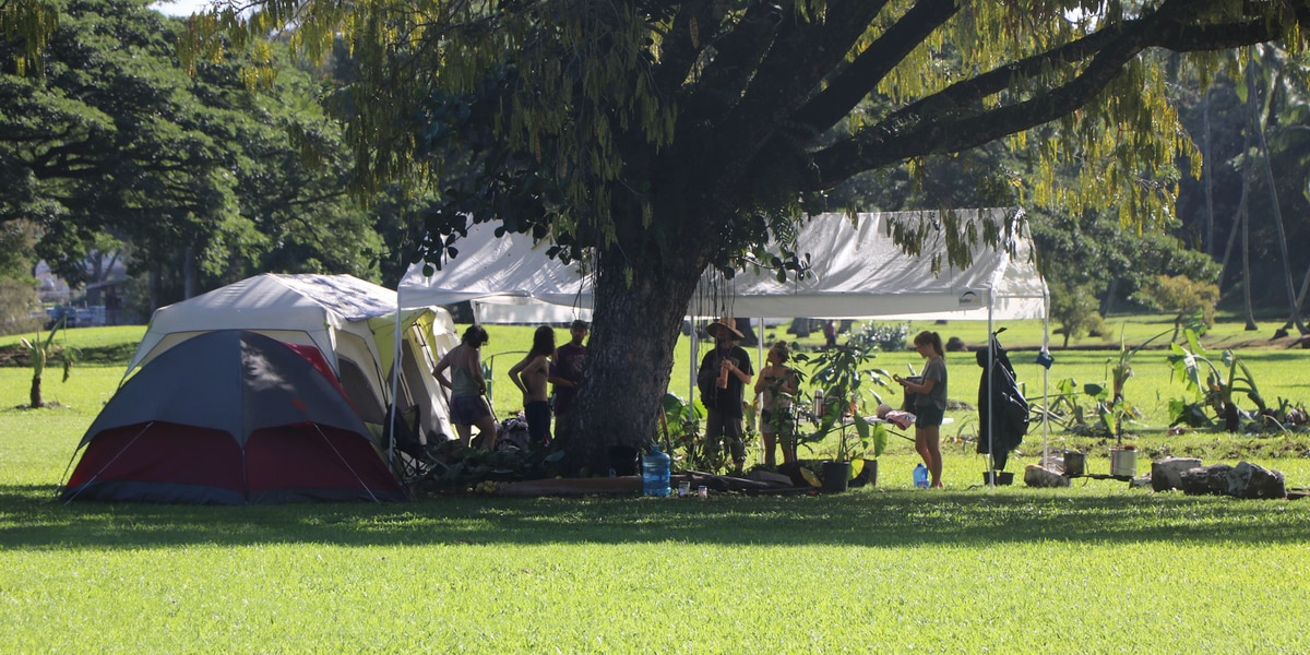 DLNR orders activists occupying Hilo's Wailoa River State Park to clear out
