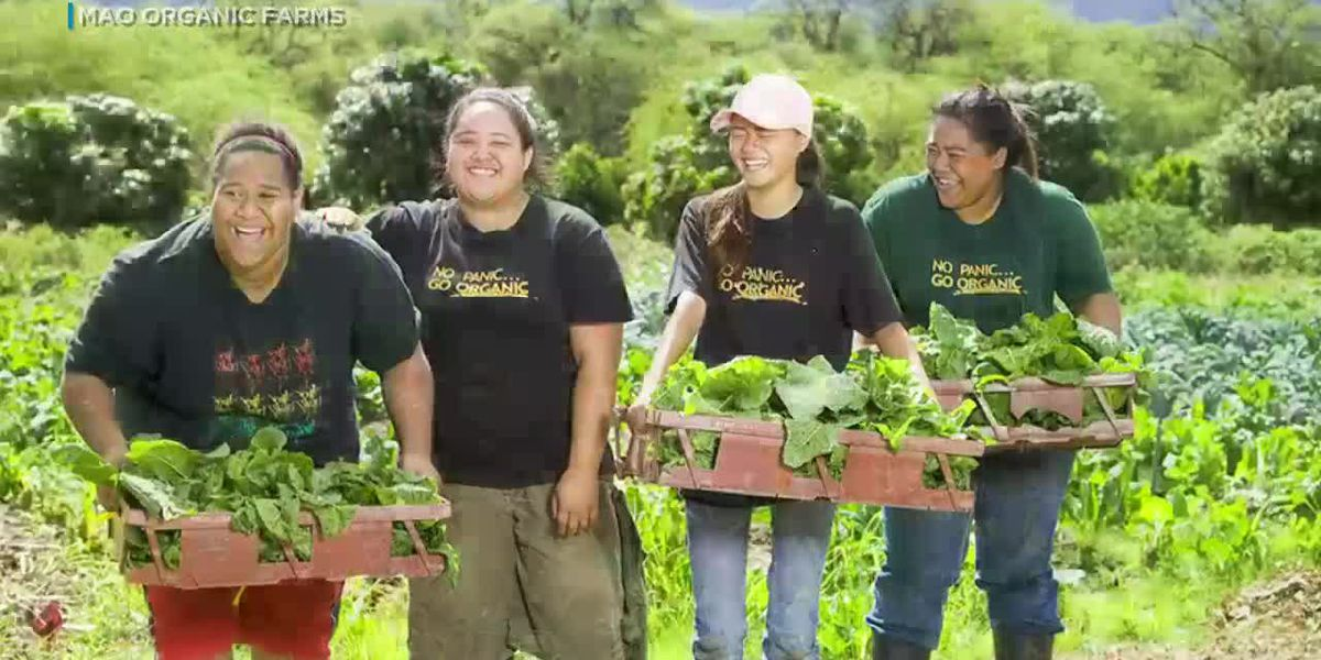 Parade of Farms showcases Waianae products