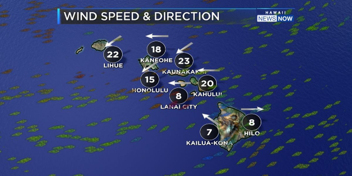 Forecast: Locally windy weather moves in for the weekend
