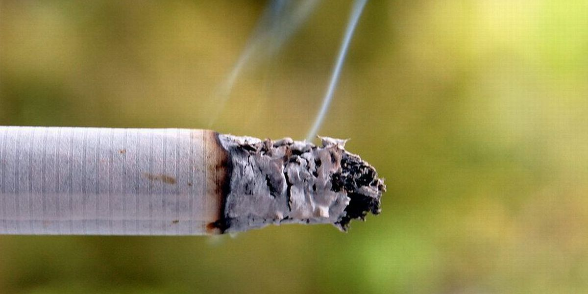 Kauai officials weigh ban on tobacco use while kids in car