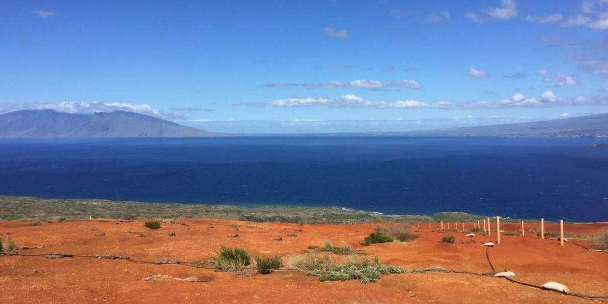 The future of Kaho'olawe: To become the state's first self-sustaining island