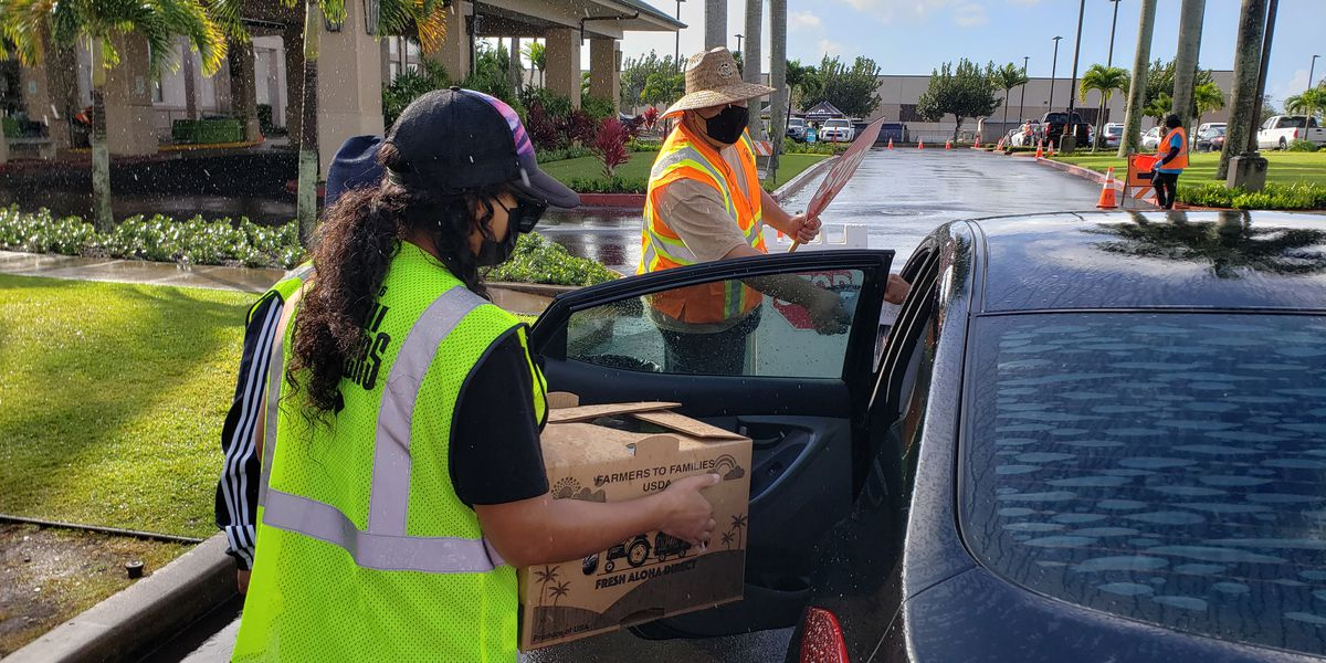 Health care company distributes 500 boxes of produce to local families in need