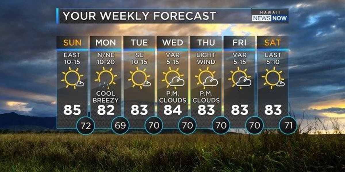 Forecast: Week ahead to bring dry conditions, slowing winds