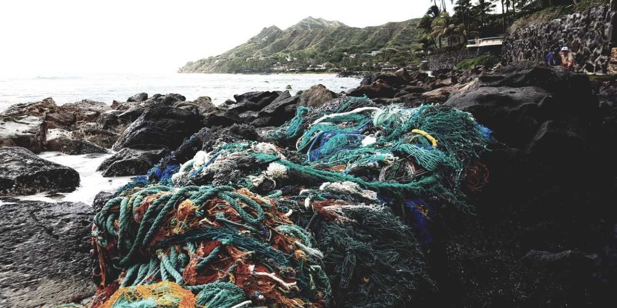Another massive mass of nets, marine debris found on Oahu's South Shore