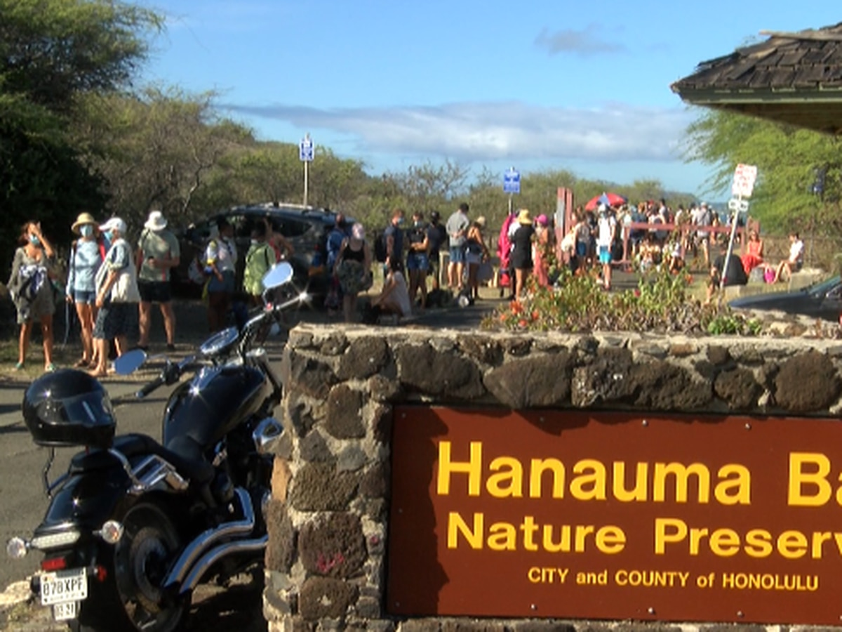 Hanauma Bay has reopened to the public, but if you plan to go be prepared for a long wait