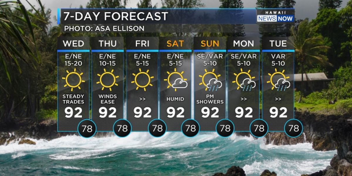 Forecast: Lighter winds on the way with hot, humid conditions