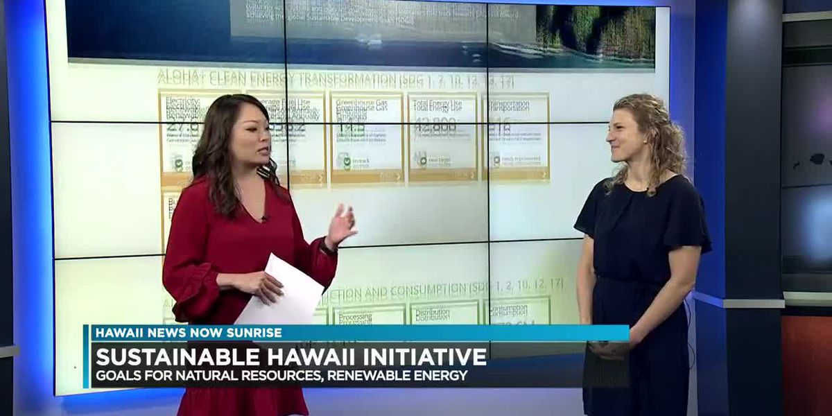 Hawaii Green Growth to help monitor state's sustainability goals with online dashboard