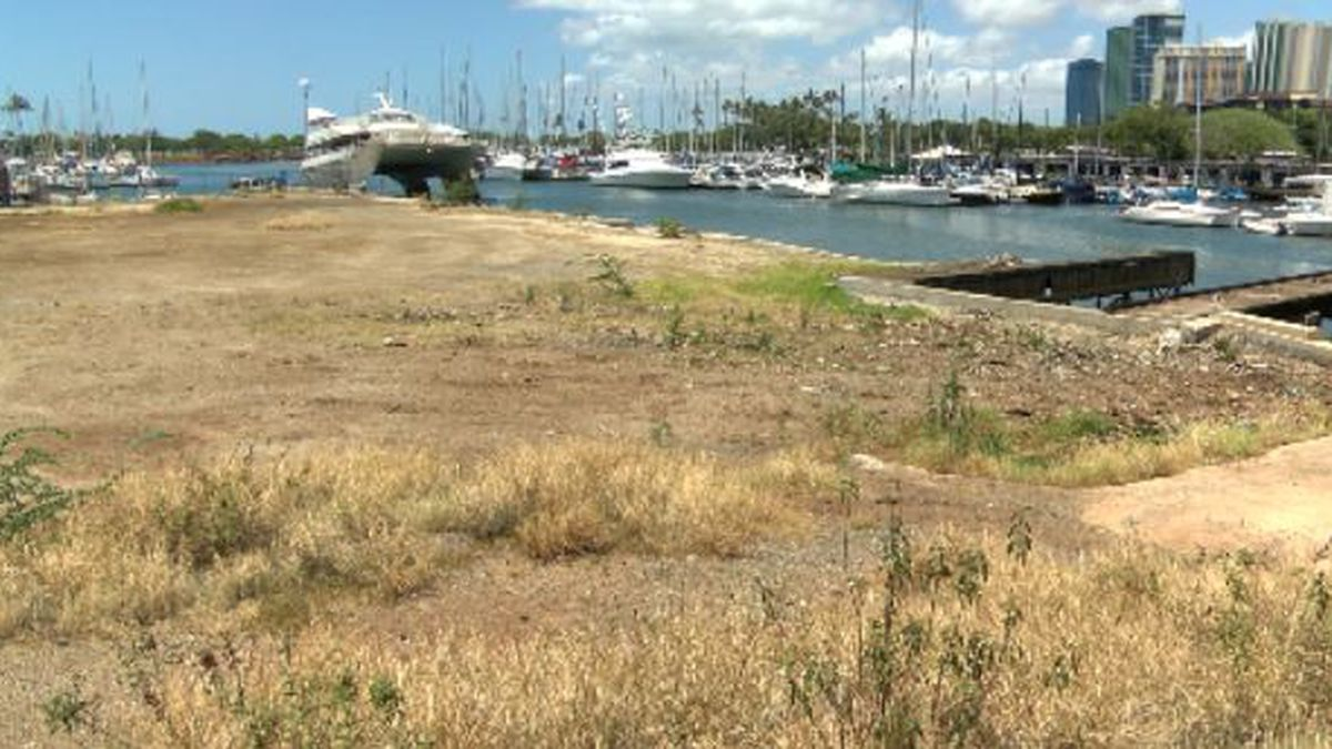 The state wants to redevelop the Ala Wai Boat Harbor. That's got boaters worried
